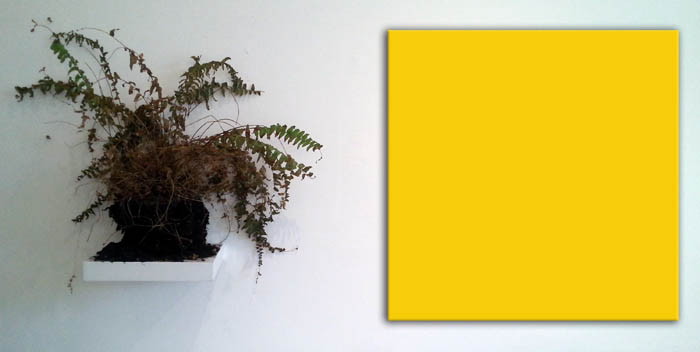 dead plant and yellow, art by Jay Rechsteiner